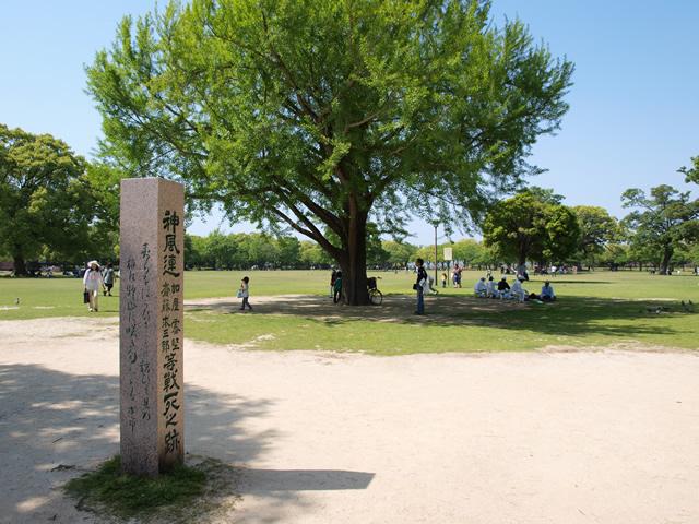 熊本城二の丸広場