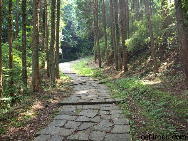 石畳の山道