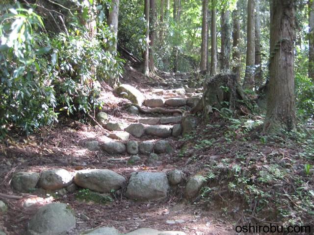 石が多くなる山道