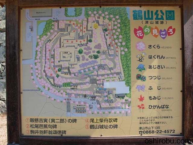 鶴山公園 花の見ごろ