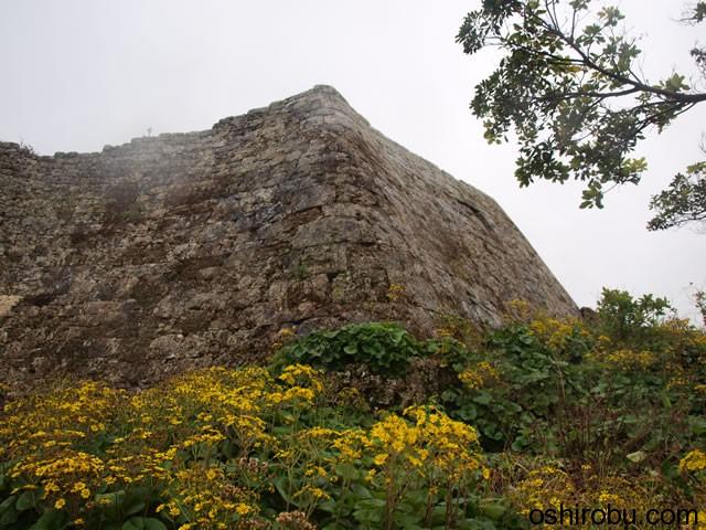 南の郭石垣