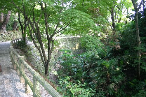 お城部ログ ~お城を攻めるお城部メンバーのブログ~-岡崎城