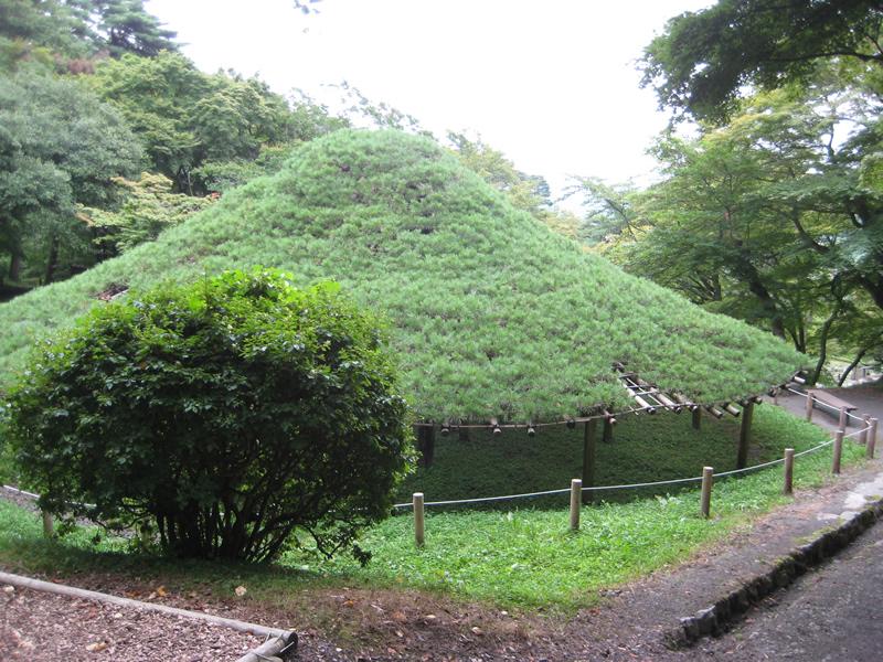 お城部ログ ~日本のお城を攻めるお城部のブログ~-霞ヶ城公園